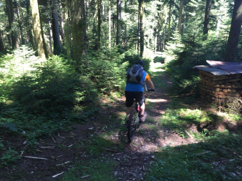 Landiswil-Trail