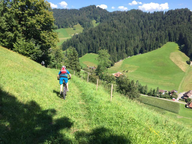 Dürsrütti-Trail