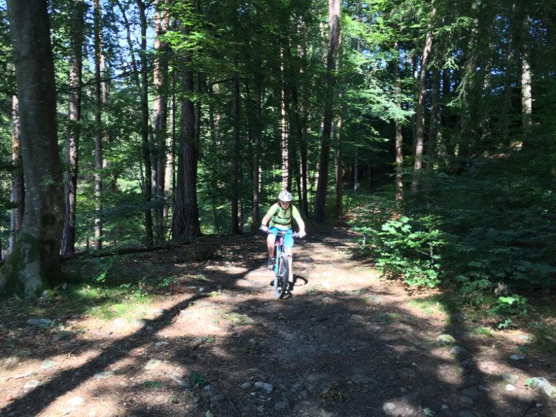 Trail Bienchen