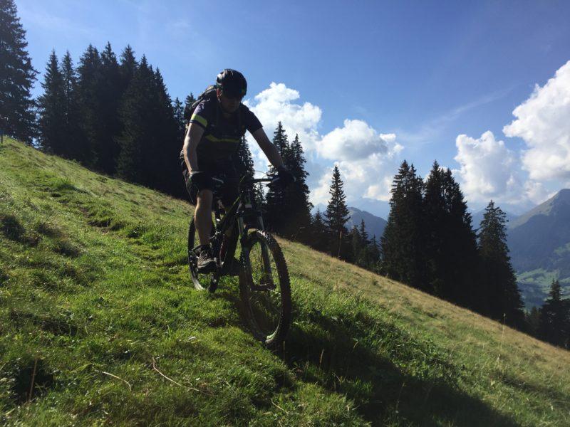 Bergwiesen-Trail Berschel