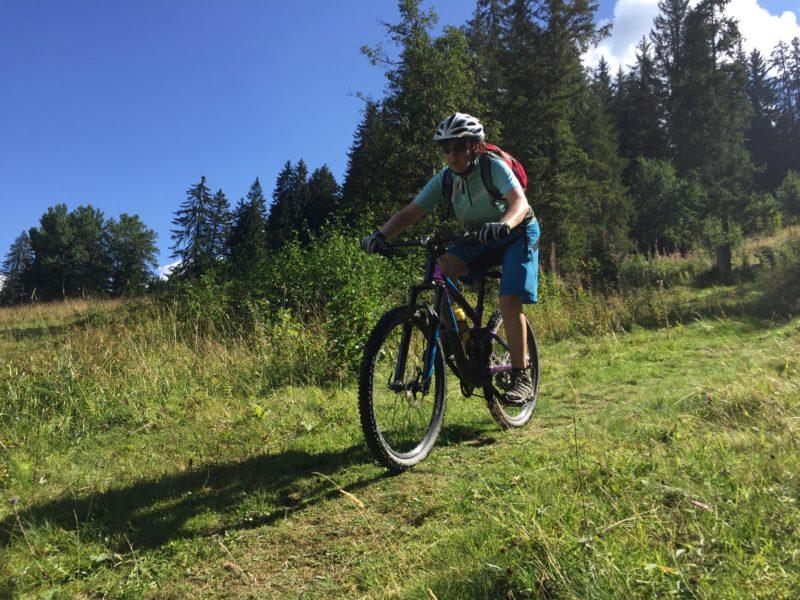 Wiesen-Trail I