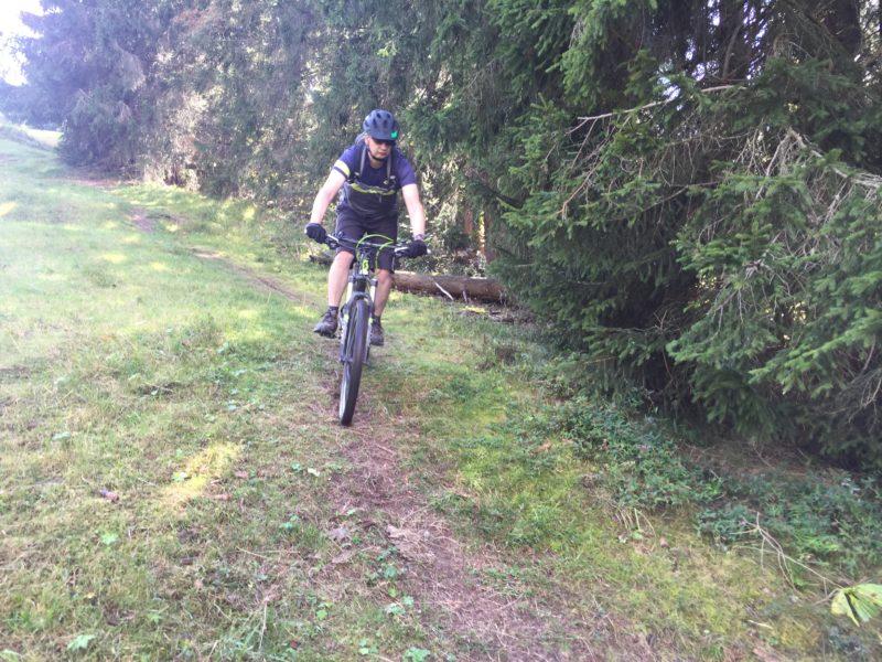 Wiesen-Trail II