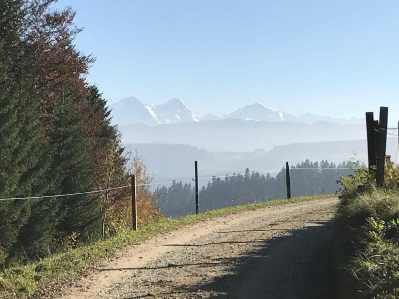 Ausblick zwischen Rainsbergalp und Häuslenbach