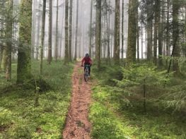 Lüssu auf Chuderhüsi-Trail