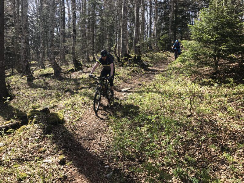 Gorgier Trail