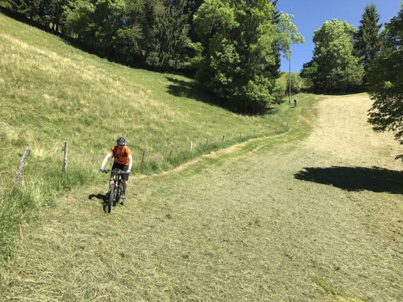 Linden Trail 03