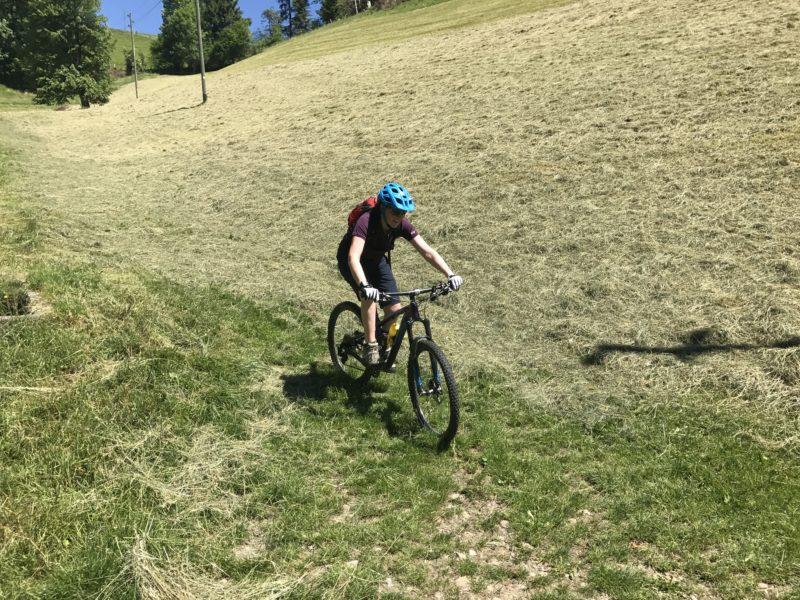 Linden Trail 04