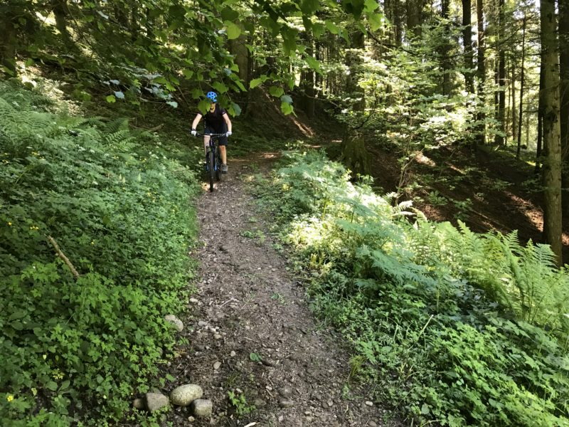 Falkenflue Trail 01