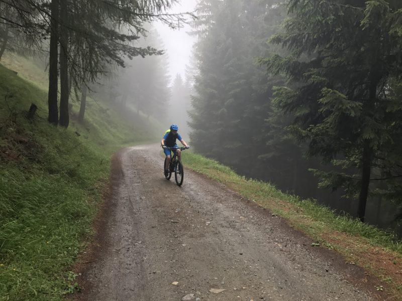 Bienchen in the mist
