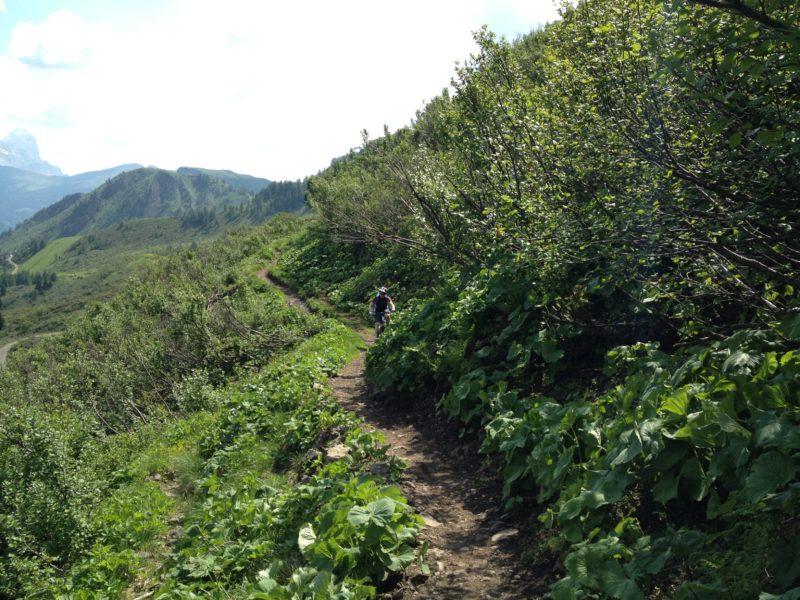 Porta Vescovo Trail
