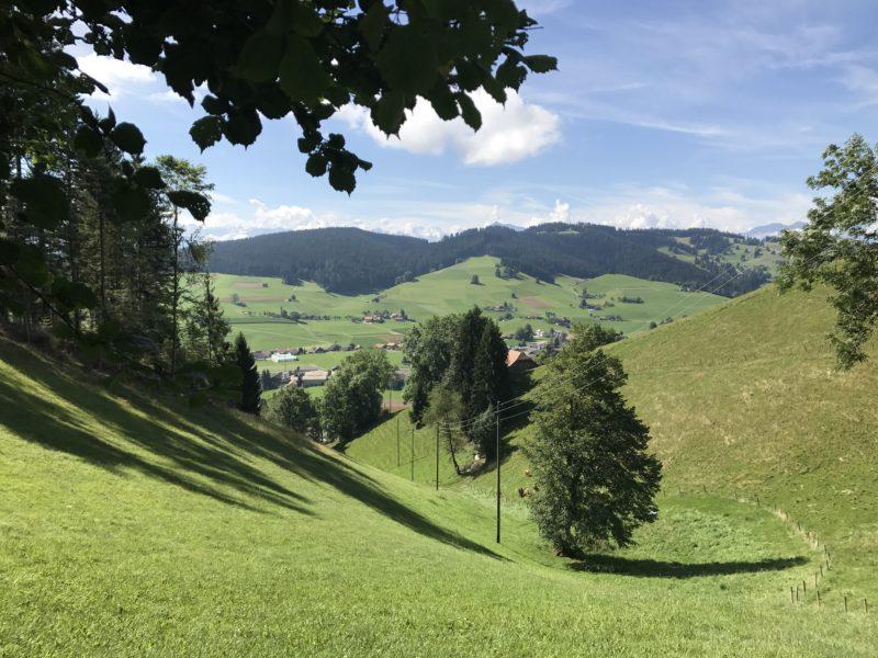 Oberhalb Linden