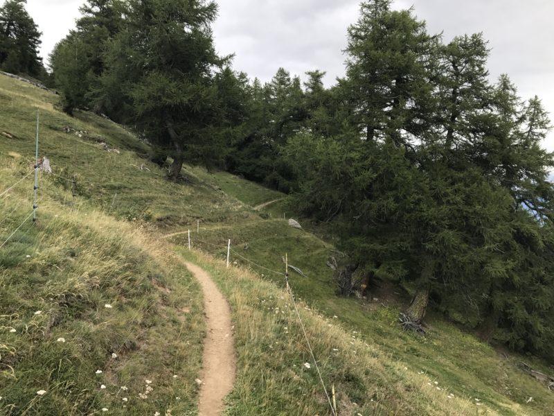 Bachalp Trail