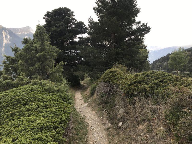 Erschmatt Trail
