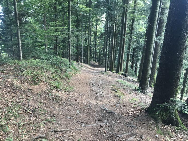 Blasenflue Trail