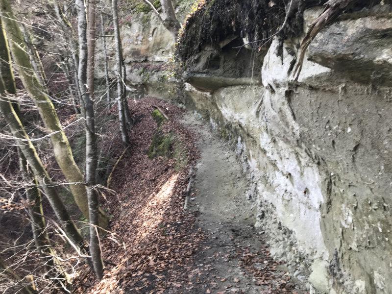 Wartenstein Trail - Felswand
