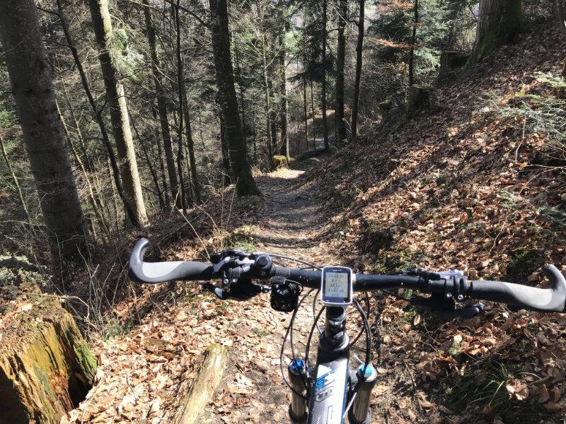 Wartenstein Trail