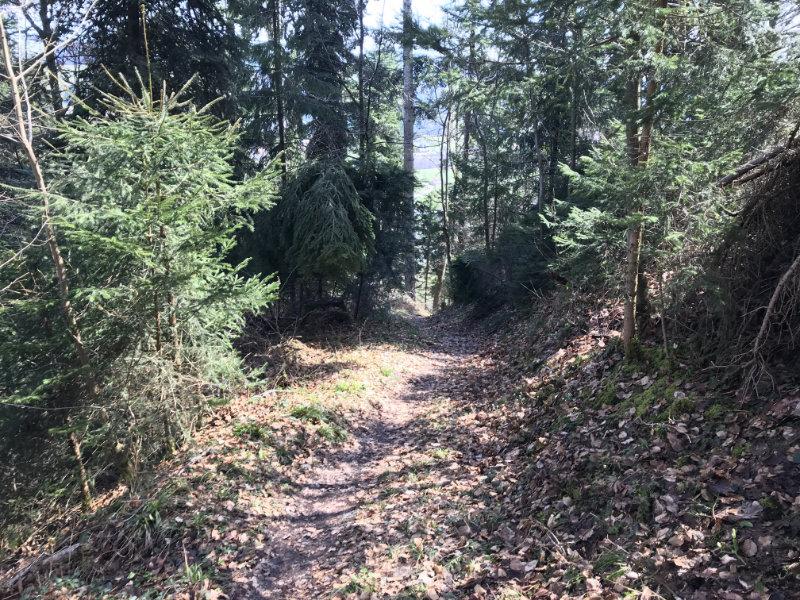 Wartenstein Trail - unten