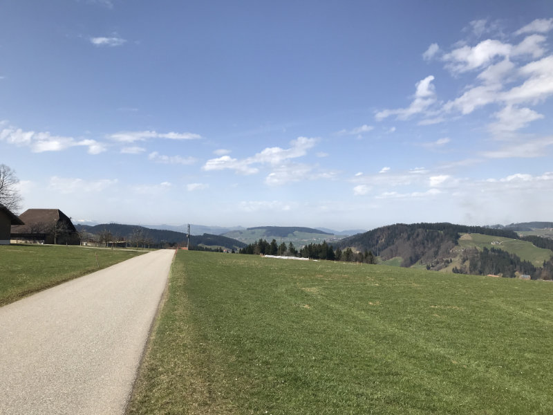 Bergweid