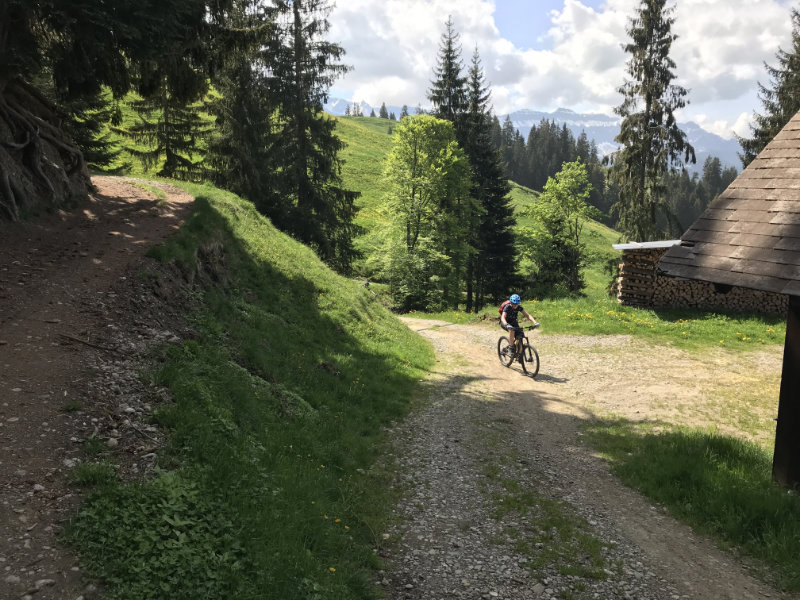 ClimbingBienchen