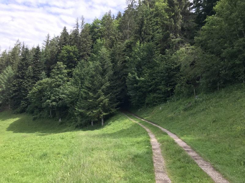 Richtung Hegeloch