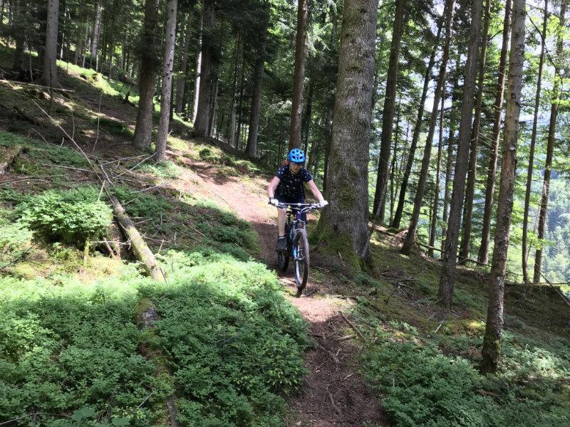 Bärbach Trail