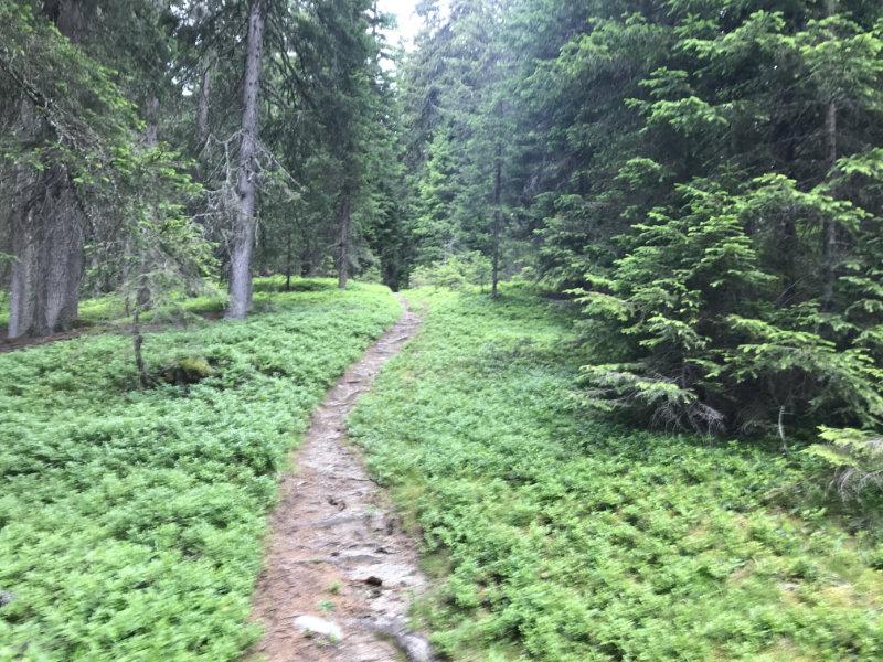 Bodeneck-Trail