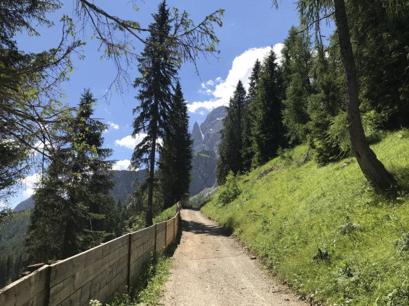 UphillBienchen