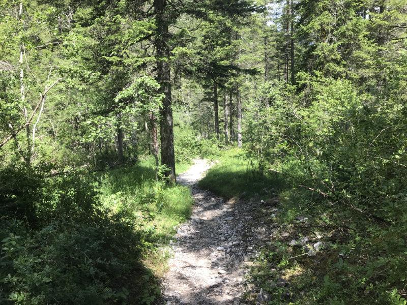 105er Trail