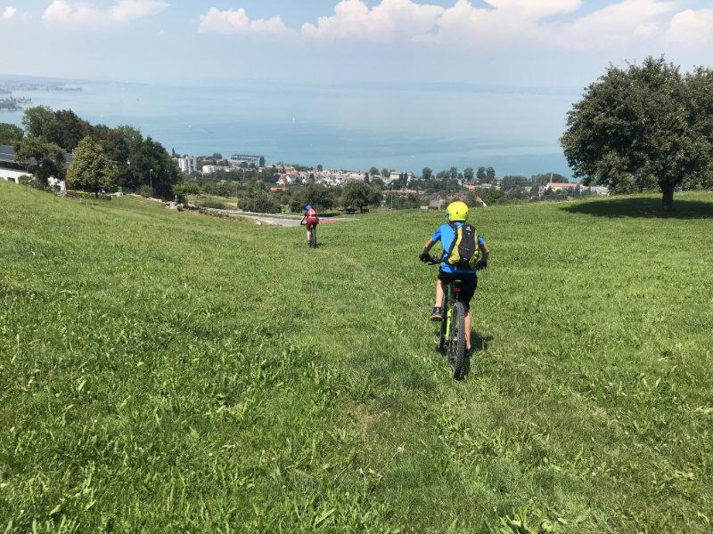 Wiesentrail und Bodensee