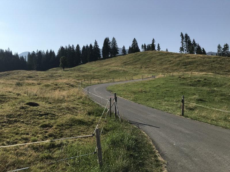 Uphill nach Schöriz