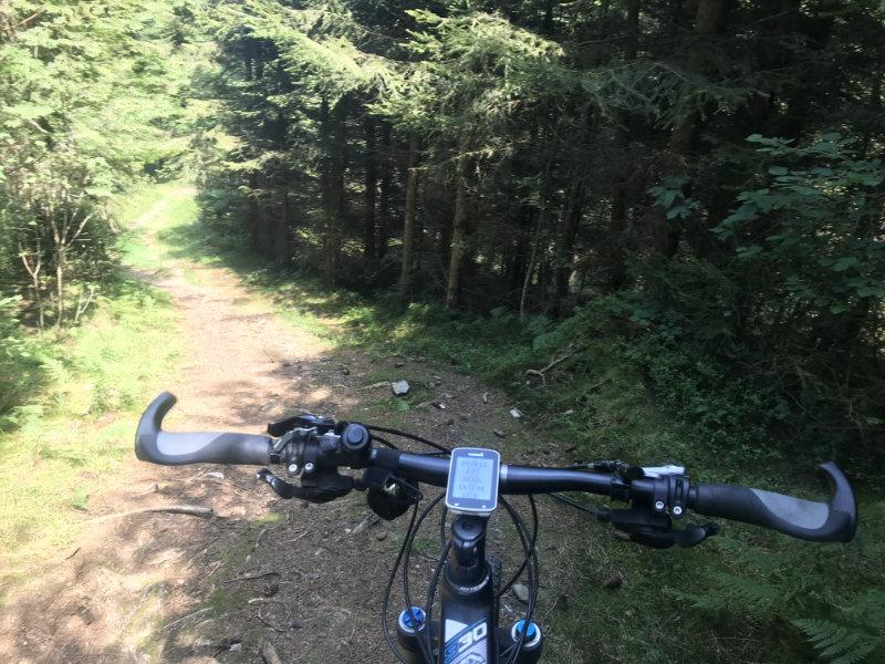 Blueme Nord Trail