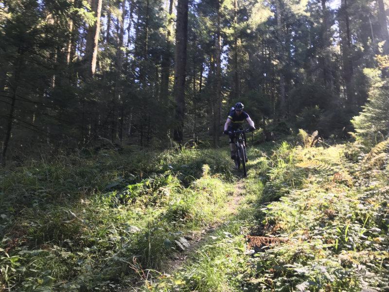 FlowTrailRider on Trail