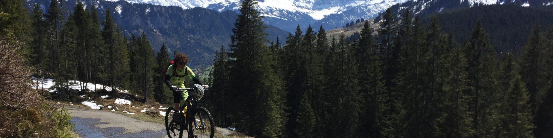 GravityBienchen am Grünenbergpass