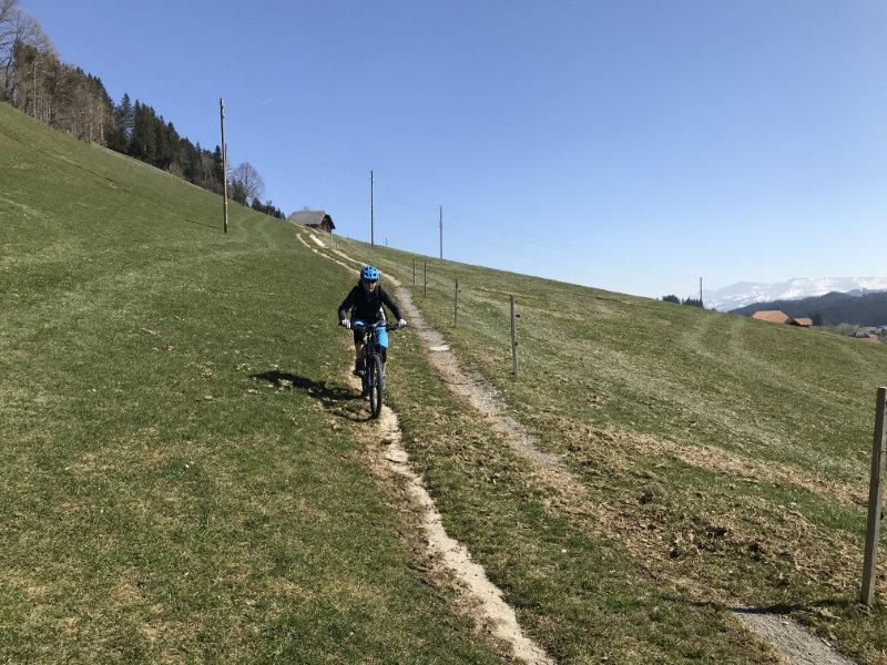 Linden Trail