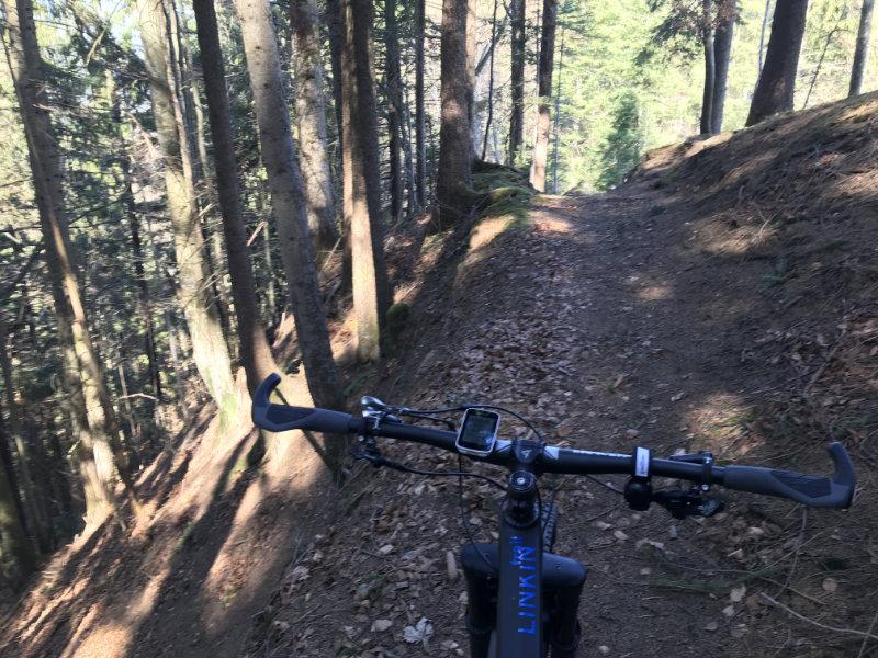Fuchsegg Trail