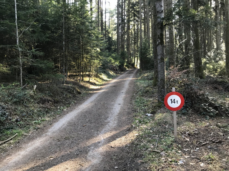 Schönenwasen-Wald, mit Gewichts-Einschränkung