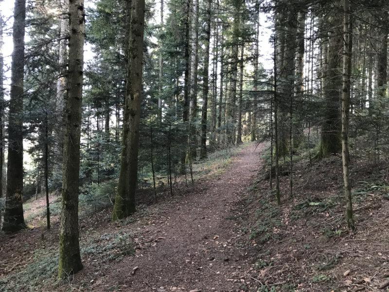 Schönenwasen-Trail