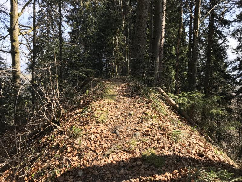 Hargarten Trail