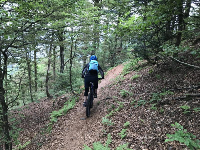 GravityBienchen rocks da Trail