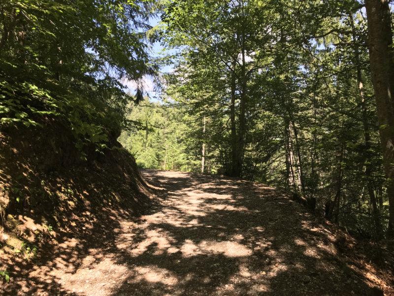 Uphill in Val Meledrio