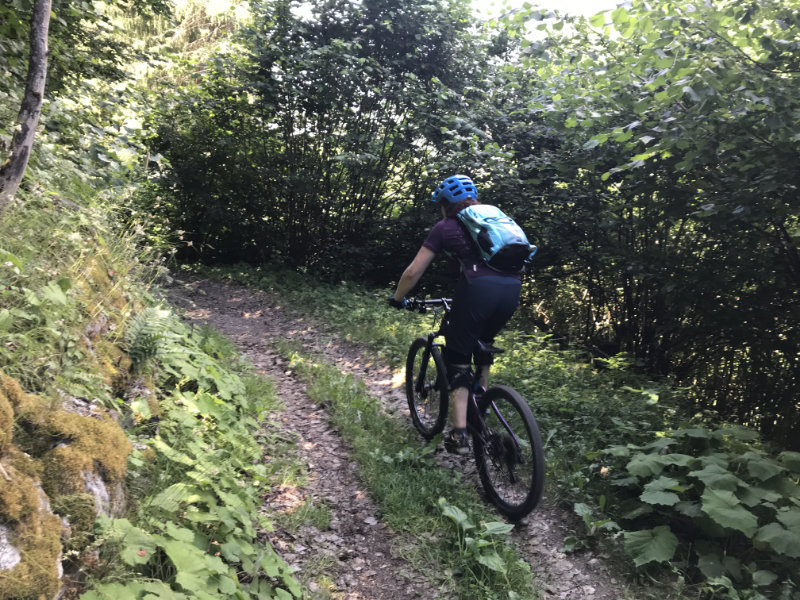 Da last Trail