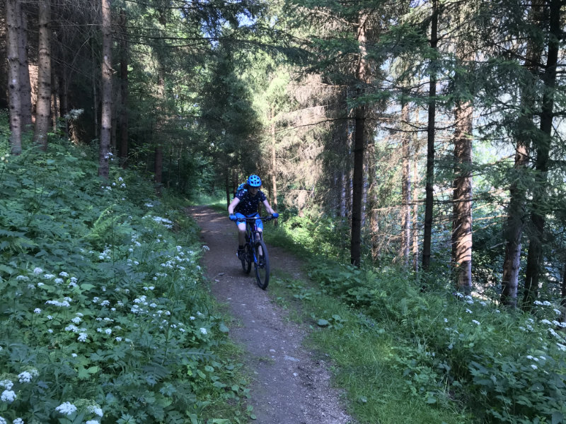 UphillBienchen on da Costa Rotian Trail