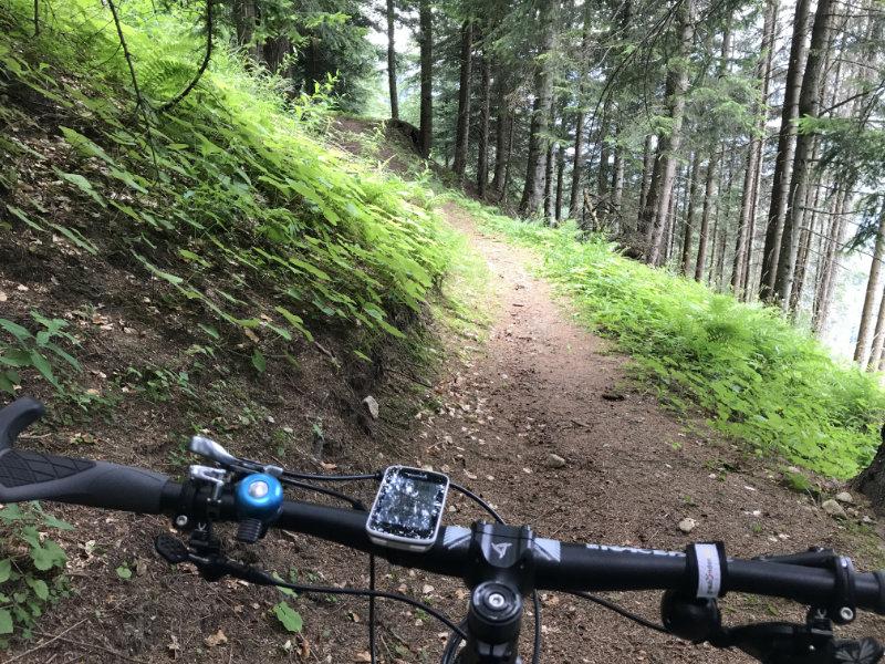 Trail to Marilleva