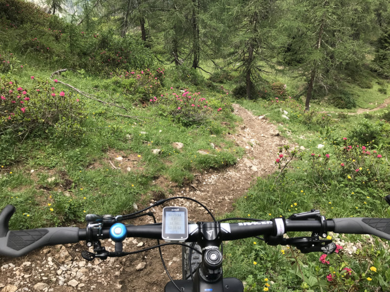 Super Trail!!