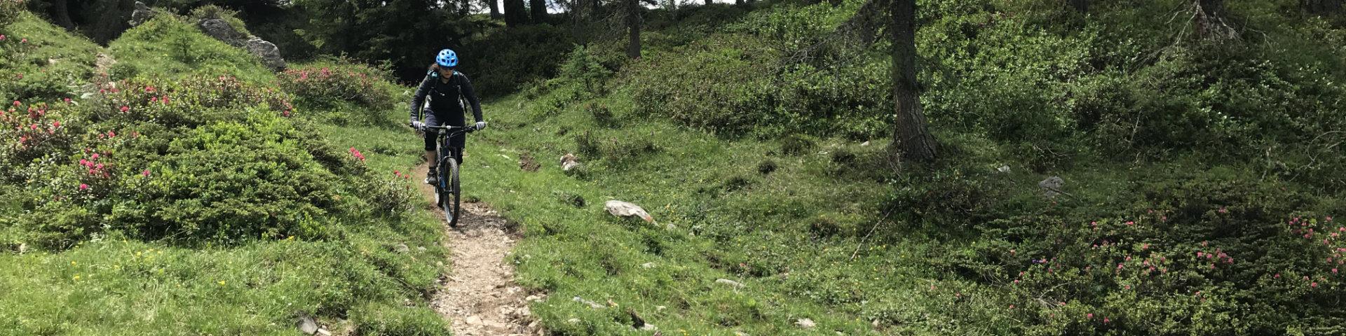 GravityBienchen on 967er Trail