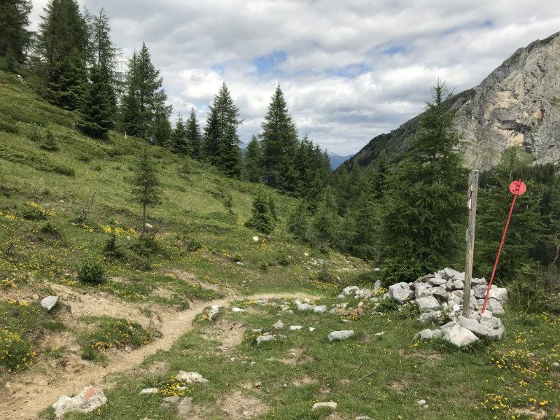 Ganz geiler Trail!!