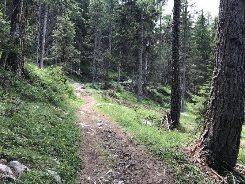 Da 334er Trail, supa!!