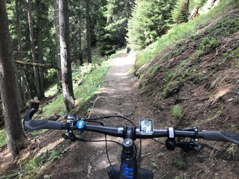 The Erb to Stafelalp Trail
