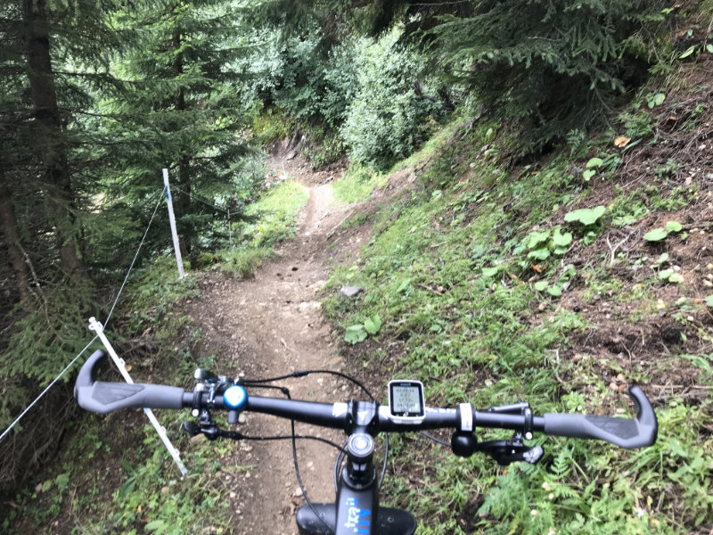 Da Stafelalp-Trail
