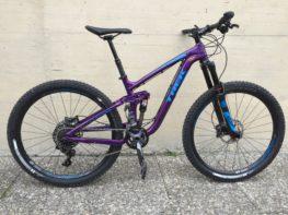 GravityBienchen Bike